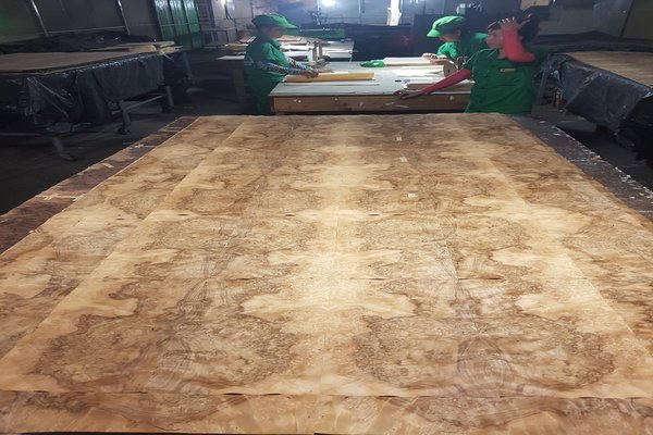 High End Burl Veneers